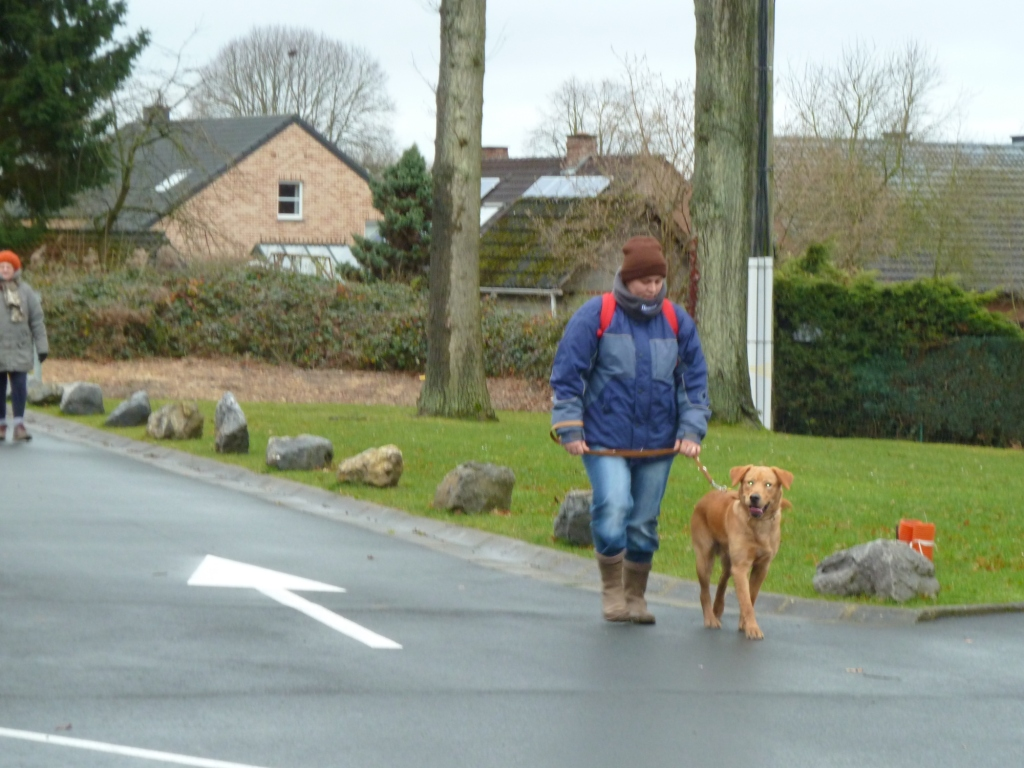 ballade noel 2013 (26)